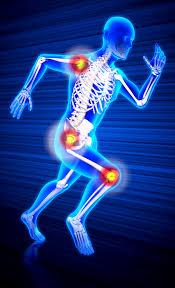 تحقیق بافت استخوانی